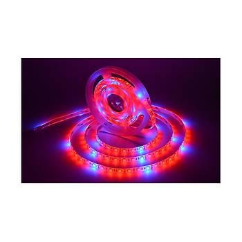 Tam Spektrum Hidrofonik Bitki Büyütme 5050 Esnek Þerit Su Geçirmez LED Iþýk