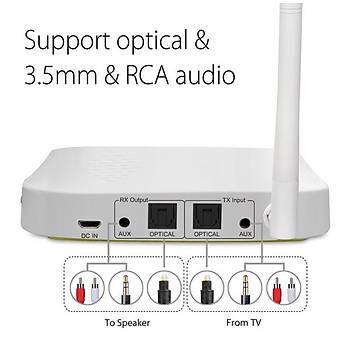 Dijital Optik RCA AUX Port