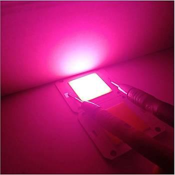 Tam Spektrum 380-840nm UV LED COB Topraksýz Tarým Bitki Büyütme 50W 12V