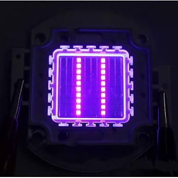 UV 395nm 20W Yüksek Güç Led Çip Bord Ultraviyole Iþýk
