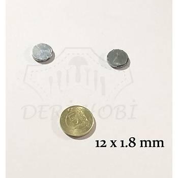 Gizli Mýknatýs 12x1.8 mm