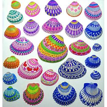 Kabuk Boyama Seti, Shell Painting, Deniz Kabuðu Boyama, Sanatsal Hobi Boyama Seti