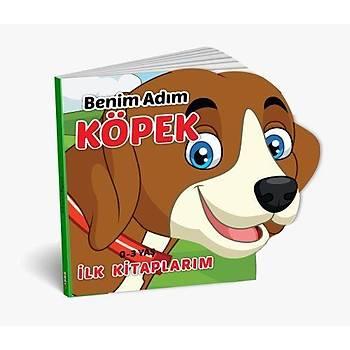 Diy-Toy, Ýlk Kitaplarým Serisi, Hayvanlar, 6 lý Set, Eðitici Zeka Geliþtirici