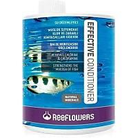 Reeflowers Effective Conditioner 1000ml Skt:1/2023 Akvaryum su düzenleyici