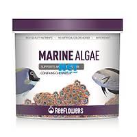 Reeflowers Marine Algae 8 LT 4456 gr