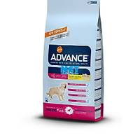 Advance Dog Maxi Senior 15 kg. Skt:2020 Yetiþkin Köpek Mamasý