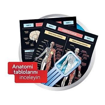 Ýnsan Vücudu Ve Anatomi