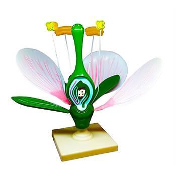 Çiçek Kesiti Modeli