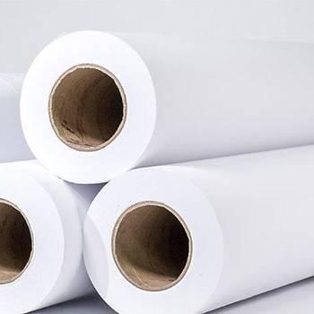 EPSON Water Resistant Matte Canvas, rolls 17 x 12, 2m C13S042013