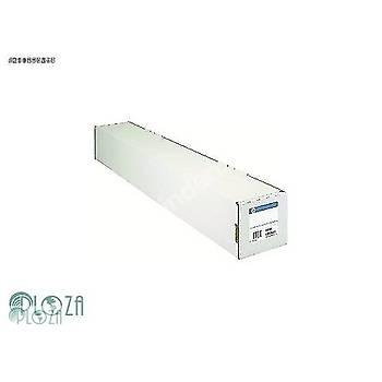 HP C0F13A 2LI PAKET DUPONT TYVEK ILE DAYANIKLI AFIS-1067 MM x 22