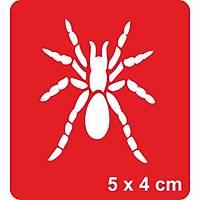 Örümcek Dövme Þablonu Kýna Deseni