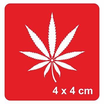Cannabis kenevir Yapraðý Dövme Þablonu Kýna Deseni