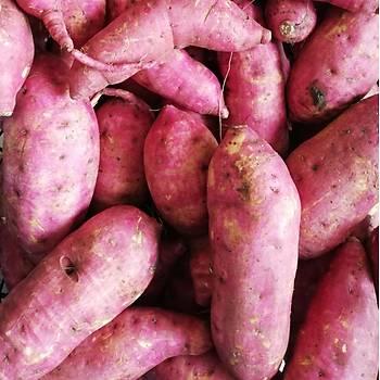 Tatlı Patates 6 kg
