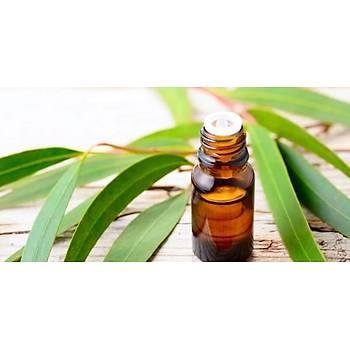 Biorganix Life Okaliptus Yaðý 20 Ml Eucalyptus Oil