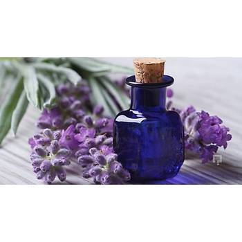 Biorganix Life Menekþe Yaðý 20 Ml Violet Oil