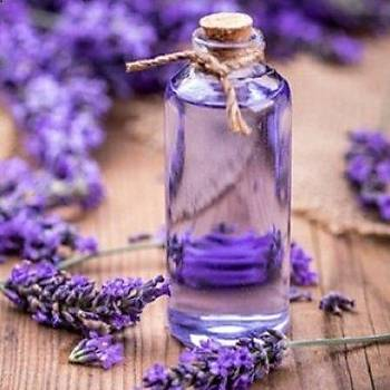 Yoðun Kokulu Doðal Lavanta Suyu 1000 Ml Lavender Water