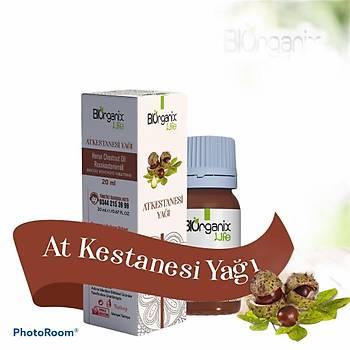 Biorganix Life At Kestanesi Yaðý 20 Ml Horse Chestnut Oil