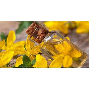 Biorganix Life Papatya Yaðý 20 Ml Chamomile Oil