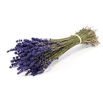 Doðal Lavanta Demeti Natural Lavender Bundle 15 Adet 200-300 Dal
