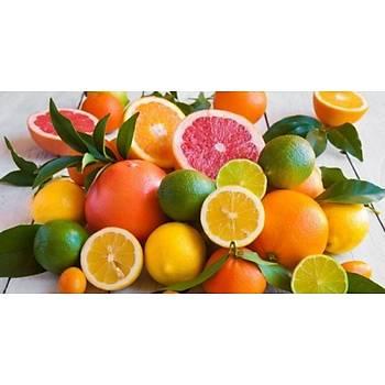 Biorganix Life C Vitamini 20 Ml