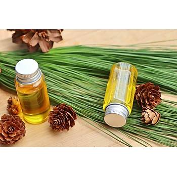 Biorganix Life Çam Terebentin Yaðý 20 Ml Pine Turpentine Oil