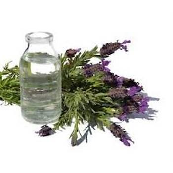 Yoðun Kokulu Doðal Lavanta Suyu 10000 Ml Lavender Water