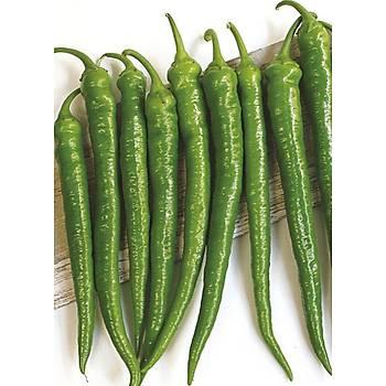 Biber Tohumu - Sera Demre 8 - 10gr / 25 gr / 100 gr ve 500 gr Seçenekleriyle