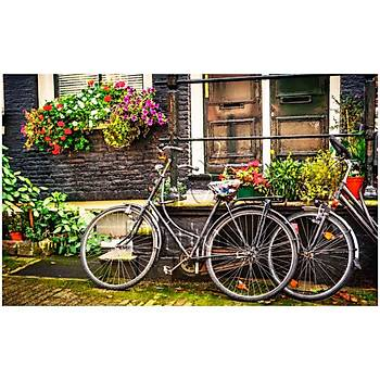 Pintoo 1000 Parça Puzzle Amsterdam