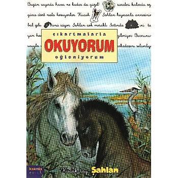 Çýkartmalarla Okuyorum Eðleniyorum Serisi: Küçük Tay Þahlan Delphine Lacharron Kaknüs Yayýnlarý