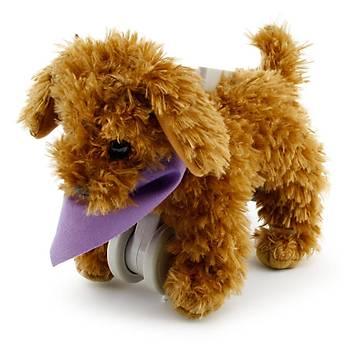My Puppy Parade Yürüyen Köpeðim Moose