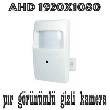 Bycam 1198 Ahd 2.0 M.Pixel Pýr Görünümlü  Gizli Kamera