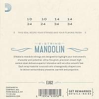 DADDARIO EJ62 80/20 Bronze Mandolin Strings Light Takým Tel Mandolin Teli