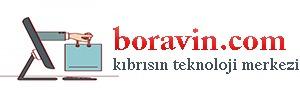 boravin.com