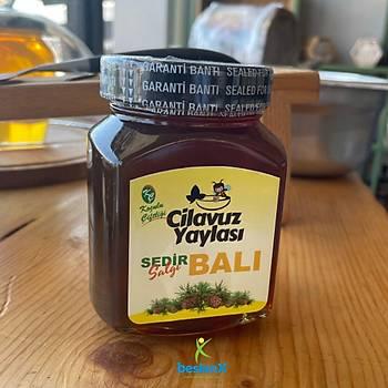 Saf Sedir Balý - 450 Gram