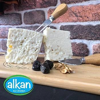 Alkan Tam Yaðlý  Sert  Ýnek Peynir