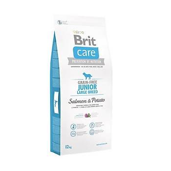 Brit Care Junior Large Tahýlsýz Somonlu ve Patatesli Büyük Irk Yavru Köpek Mamasý 12 KG