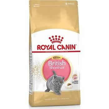 Royal Canin British Shorthair Yavru Kedi Mamasý 2 KG