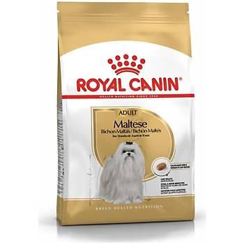 Royal Canin Maltese Terrier Yetiþkin Köpek Mamasý 1.5 KG