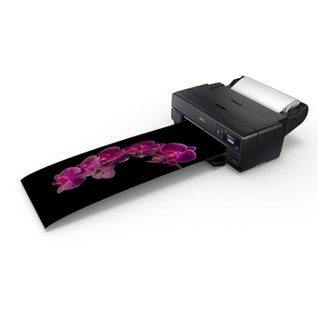 Epson Surecolor SC-P800 A2 Masaüstü Fotoğraf Yazıcısı / C11CE22301BX