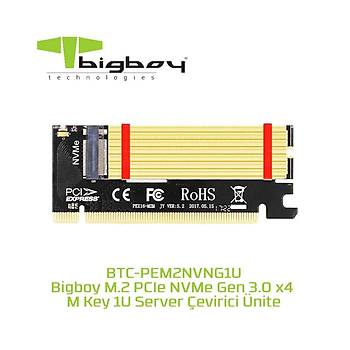 Bigboy BTC-PEM2NVNG1U PCIe 3 X4 M2 X4 M Key 1 U Server Çeviricisi