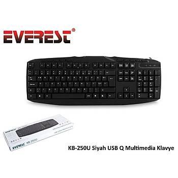 Everest KB-250U Q TR USB Multimedýa Siyah Kablolu Klavye