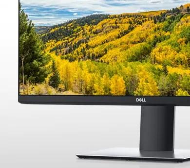Dell IPS Monitör