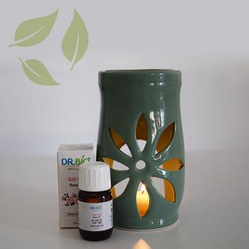 Dr Bio Aromaterapi LotusTasarýmlý Soft Yeþil Buhurdanlýk & Dr Bio Gül Yaðý (20 ml)