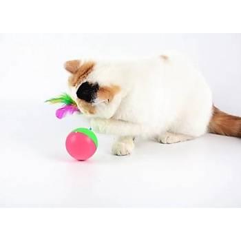 Kedi Oyun Topu Fareli Hacý Yatmaz