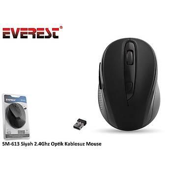 Everest SM-613 Siyah 2.4Ghz Optik Kablosuz Mouse