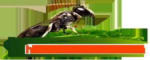 HAŞERE MARKET Fare Ve Haşere İlaçları Satış Mağazası | Tüm Fare ve Böcekler İçinİlaçlama Ürünleri | İlaçlama Hizmetleri|Bahçe Malzemeleri|Endüstriyel Temizlik Ürünleri