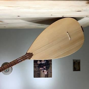 Kýsa Sap Yaprak Dut Baðlama