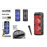 Auris Ars-K26 Karaoke Mikrofonlu Bluetooth Radyo Hoparlör Mavi