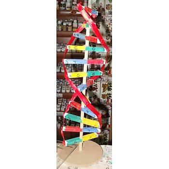 DNA MODELİ (ÖĞRENCİ TİPİ)