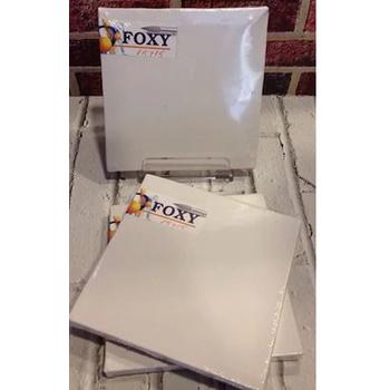 Foxy 20X20 Tuval